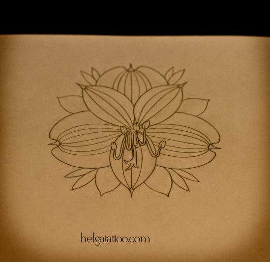рисунок дизайн скетч цветок alstroemeria flower flor design sketch diseno old school neo traditional tattoo tatuaje тату в традиционном стиле традиция олд скул традишнл в Санкт-Петербурге