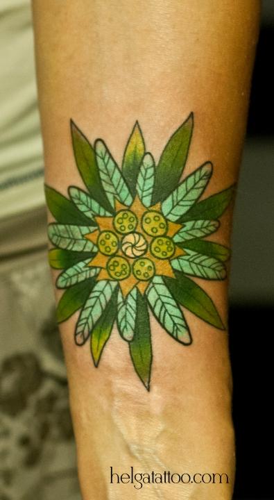edelweiss old school neo traditional tattoo tatuaje flower flor цветок горный необычный на руке тату в традиционном стиле традиция олд скул традишнл   цветная татуировка в Санкт-Петербурге