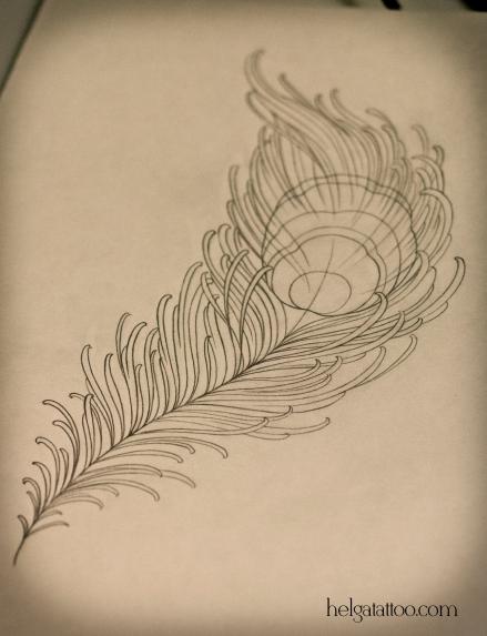 feather peacock рисунок дизайн скетч design sketch diseno old school neo traditional tattoo tatuaje тату в традиционном стиле традиция олд скул традишнл перо павлина цветная татуировка  в Санкт-Петербурге