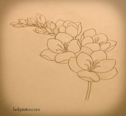 цветок freesia flower flor рисунок дизайн скетч design sketch diseno old school neo traditional tattoo tatuaje тату в традиционном стиле традиция олд скул традишнл   цветная татуировка  в Санкт-Петербурге
